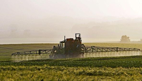 los quimicos de los pesticidas en las verduras y frutas